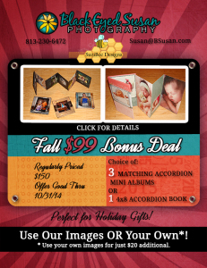 Accordion Mini's or Accordion Book Fall Special $99